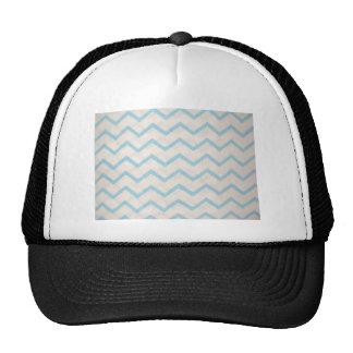 blue lines in zig zag trucker hat