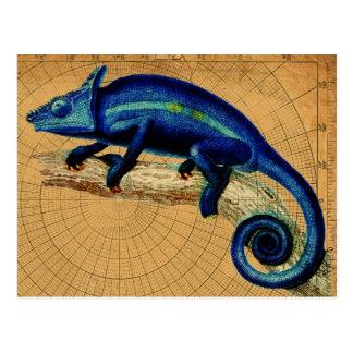 Blue Lizard Postcard
