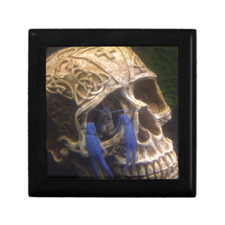 Blue lobster crayfish hanging out in a skull eye gift box