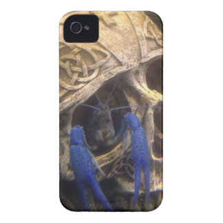 Blue lobster crayfish hanging out in a skull eye iPhone 4 Case-Mate case
