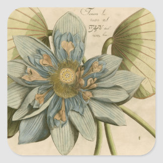 Blue Lotus Flower on Tan Background with Writing Square Sticker