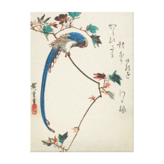 Blue Magpie on Maple Branch Japanese Woodblock Canvas Print