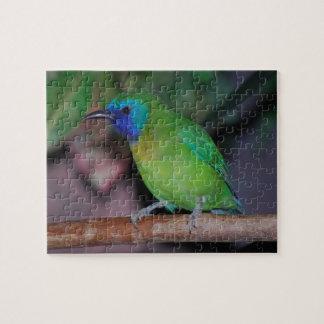 blue masked leaf bird puzzle