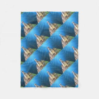 Blue Meerkat Night,_ Fleece Blanket
