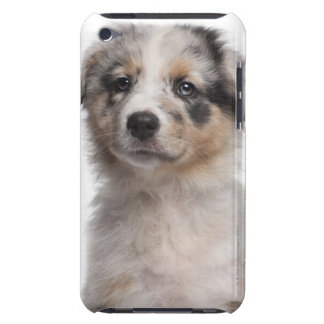Blue Merle Australian Shepherd puppy close-up iPod Touch Cover
