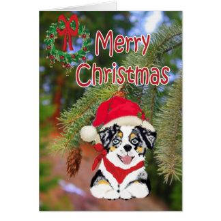 Blue Merle Christmas Aussie Cartoon Puppy Card