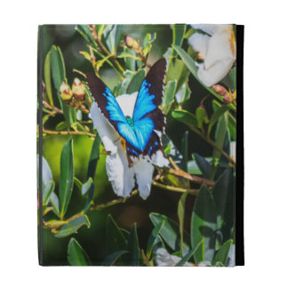 Blue Monarch Butterfly on Flowers iPad Folio Cover