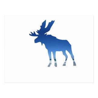 blue moose postcard