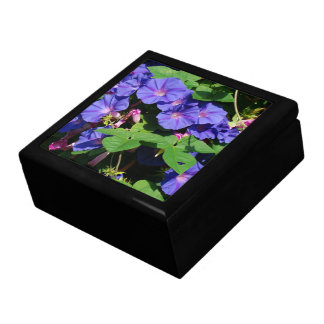 Blue Morning Glory Flower Floral Gift Box