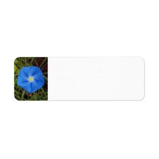 Blue Morning Glory Flower Label Return Address Label