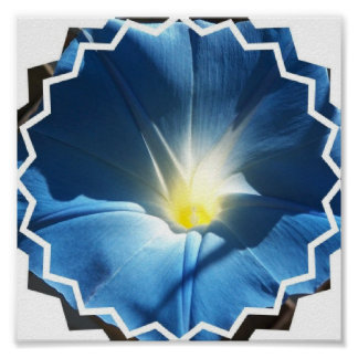 Blue Morning Glory Invitations Posters