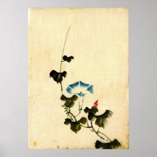Blue Morning Glory Vine 1840 Poster