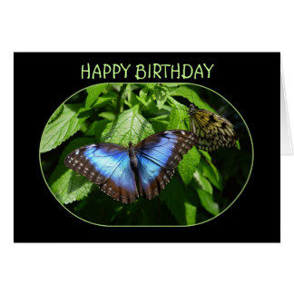 Blue Morpho Butterfly Happy Birthday Card