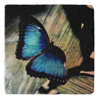 Blue Morpho Butterfly Pretty Marble Stone Trivet