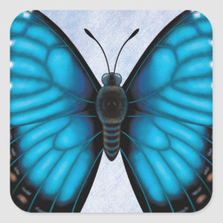 Blue Morpho Butterfly Square Sticker