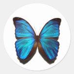 Blue Morpho Butterfly Stickers