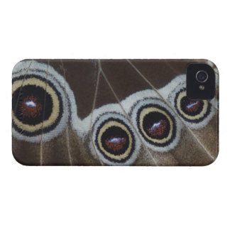 Blue Morpho, Morpho menelaus, adult newly iPhone 4 Case-Mate Cases