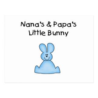 Blue Nana s and Papa s Little Bunny Postcards