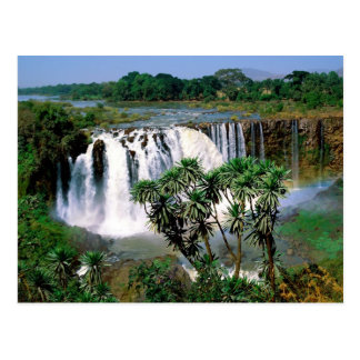 Blue Nile Falls Postcard