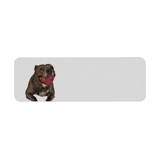 Blue Nose Pitbull Return Address Labels