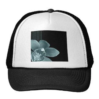 Blue Orchid on Black Cap