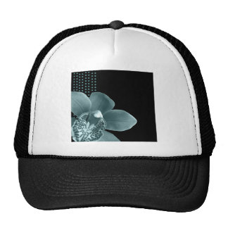 Blue Orchid on Black Hat