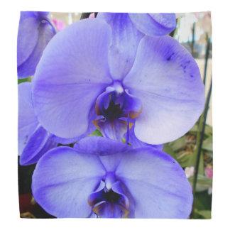 Blue Orchids Bandana