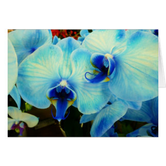 Blue Orchids Note Card