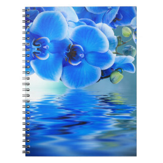 Blue Orchids Notebook