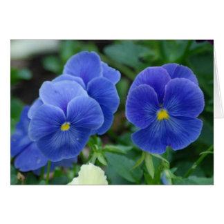 Blue Pansies Greeting Card