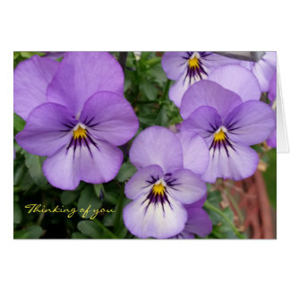 Blue Pansies/Violets Thinking of you Card