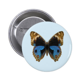 Blue Pansy Butterfly Buttons
