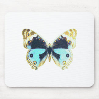 Blue Pansy Butterfly Mousepads