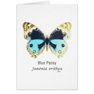 Blue Pansy Butterfly with Name Greeting Card