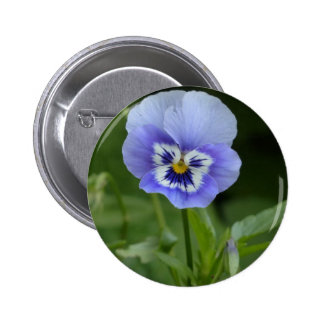 Blue Pansy Flower Pinback Buttons