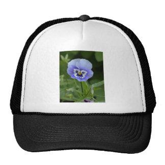 Blue Pansy Flower Trucker Hat