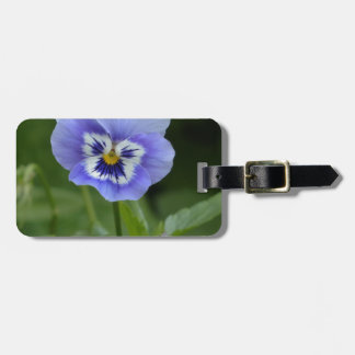 Blue Pansy Flower Luggage Tag