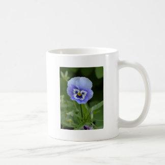 Blue Pansy Flower Coffee Mugs