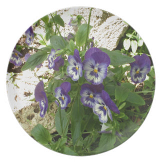 Blue Pansy Party Plate