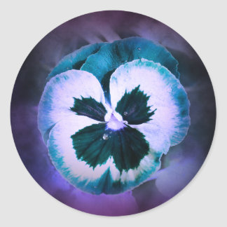 Blue Pansy With Water Droplets Round Sticker