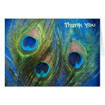 Blue Peacock Feathers Wedding Thank You Note Card