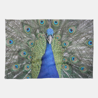 Blue Peacock Portrait Tea Towel