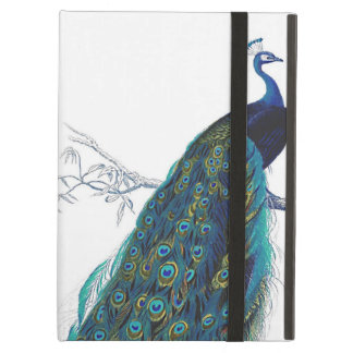 Blue Peacock with beautiful tail feathers iPad Cover