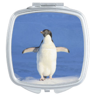 Blue penguin vanity mirrors