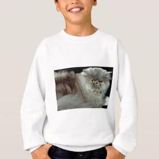 Blue Persian Sweatshirt