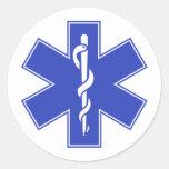Blue Pink Aqua Baby Hot  Nurse EMS Star of Life Round Stickers
