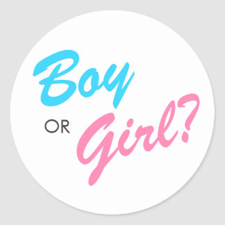 Blue & Pink Boy or Girl Gender Reveal Stickers
