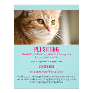 Blue & Pink Photo Pet Sitting Services flyer's 302 21.5 Cm X 28 Cm Flyer