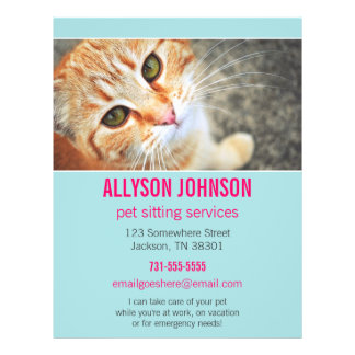 Blue & Pink Photo Pet Sitting Services flyer's 4 21.5 Cm X 28 Cm Flyer