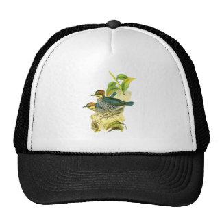 Blue Pitta Mesh Hat